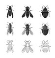 isolated object insect and fly icon collection vector image vector image