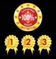 set golden badges on black background vector image