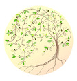 Stylized green tree vector image vector image