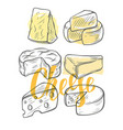 various types of cheese vector image vector image
