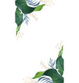 watercolor green card tropical leaves and vector image vector image