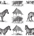 zebra seamless pattern animal hand drawn print vector image