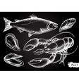 hand drawn seafood chalkboard set vector image