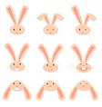 Face Rabbit vector image