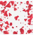 Flying rose petals background vector image
