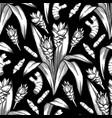 graphic curcuma pattern vector image