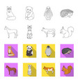 horse cow cat squirrel and other kinds of vector image