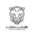 lion head outline logo vector image vector image
