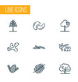 nature icons line style set with pine caraway vector image vector image