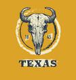 texas buffalo tee print graphic vector image vector image