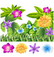colorful flowers in tropical garden vector image vector image