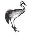 crane vintage vector image vector image