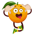 crazy orange on white background vector image vector image