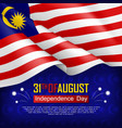 festive of independence day vector image