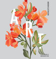 macro astromelia wild flower bloom realistic vector image vector image