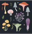 set mushrooms on black background vector image vector image