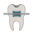 tooth with root and brace in colored crayon vector image vector image