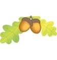 Two acorn with leaves vector image vector image