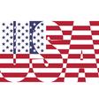 USA Flag vector image vector image