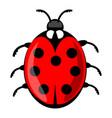 cute ladybug cartoon isolated on white background vector image