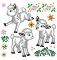 cartoon little sheep set vector image vector image