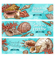 summer beach shells corals and mollusks vector image