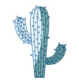 blue shading silhouette of cactus with two vector image