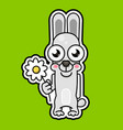 cute cartoon rabbit with daisy smiling vector image