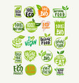 eco organic product vector image