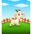 happy goat cartoon on the field vector image vector image