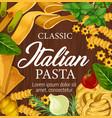 italian homemade pasta noodles and seasonings menu vector image