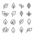 leaf line icon set vector image vector image