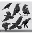 Ravens set