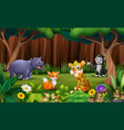 wild animlas playing in park vector image vector image