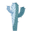 blue shading silhouette of cactus with two vector image vector image