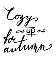 Cozy up for autumn Hand drawn lettering card vector image vector image