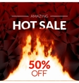 Hot offer SALE discounts with burning fire vector image vector image
