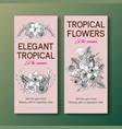 line art tropical flyer design for hotel vector image vector image