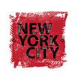 New York design vector image vector image