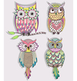 set cute colorful owls vector image