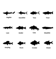 Silhouette of fish with an inscription vector image