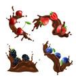 chocolate splash and berries set vector image vector image