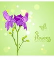 flowers purple vector image