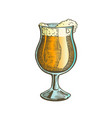 hand drawn glass on leg color with foam beer vector image