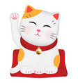 maneki neko or japan lucky cat vector image