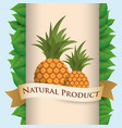 pineapple natural product poster ribbon vector image vector image