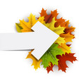 autumn card with colorful leaves vector image