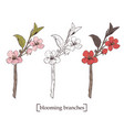 blooming tree set collection hand drawn vector image vector image