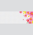 hello spring flower frame with transparent vector image vector image