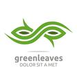 leaves landscaping ecology design vector image